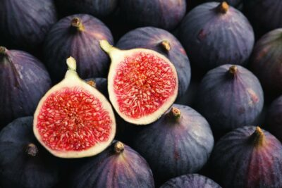 National Tree of Nepal - FIG