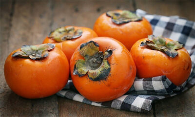National Fruit of South Korea -Persimmons